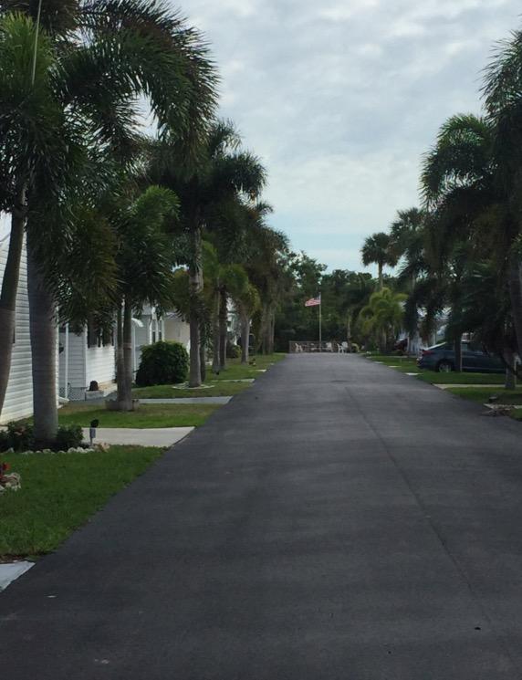 NLYH Street View